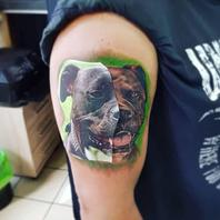 Hundeportrait done by Pascal